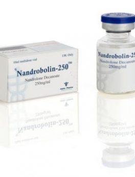Nandrobolin-250 Nandrolone Decanoate 10ml