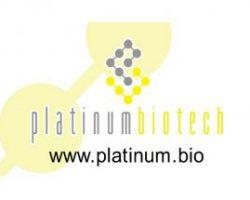 platinum-300x215
